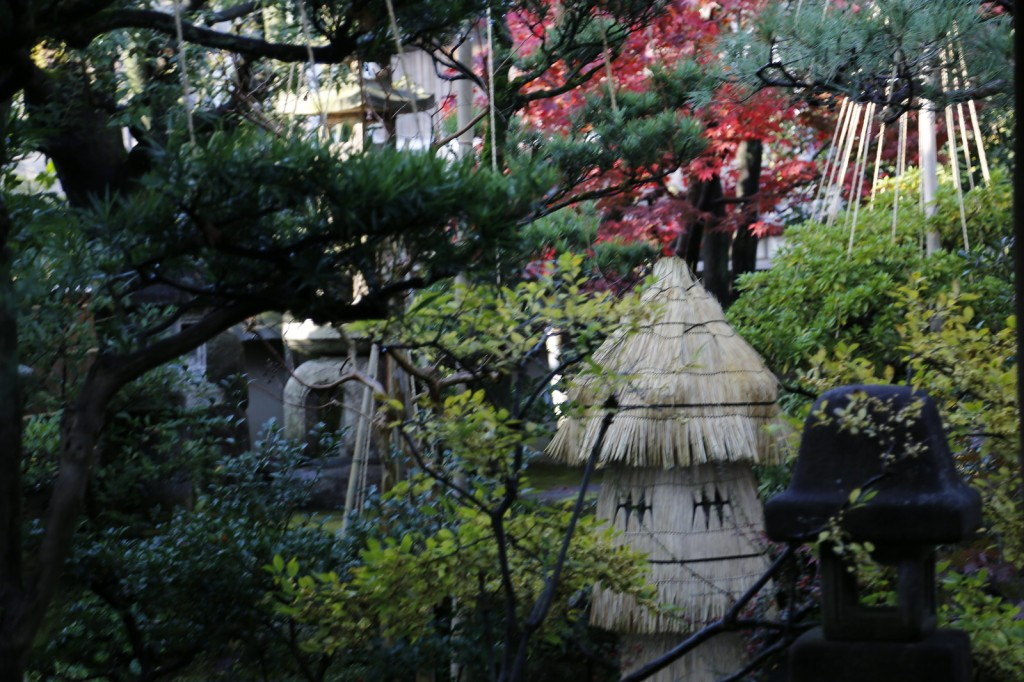 The Nomura house samurai garden