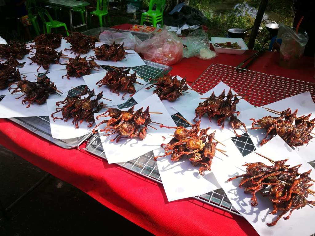 Quail birds for sale in the market Yasothon countryside
